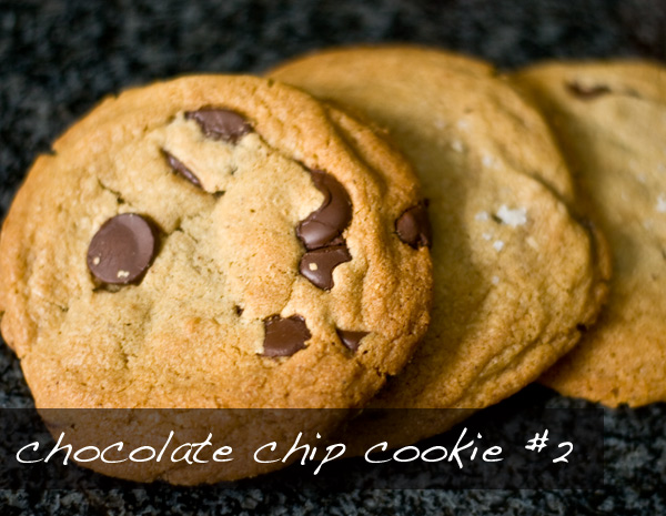 Chocolate Chip Cookie Take 2 The Klutzy Chef